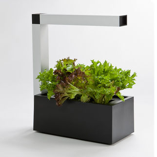 Herbie IndoorGarden